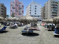 Фото отеля Flamingo Beach