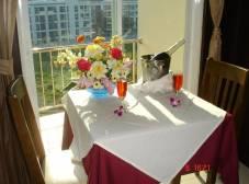 Фото отеля SM Resort
